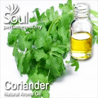 Natural Aroma Oil Coriander - 10ml