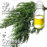 Natural Aroma Oil Cypress - 10ml