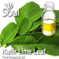 Pure Essential Oil Kaffir Lime Leaf - 10ml