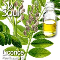 Pure Essential Oil Licorice - 50ml