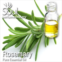Pure Essential Oil Rosemary - 10ml