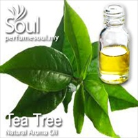 Natural Aroma Oil Tea Tree - 50ml